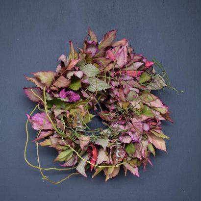 野の花屋  キイチゴの秋色リース