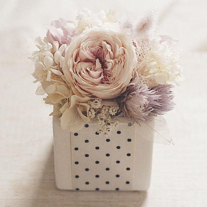 antique pink rose  BOX