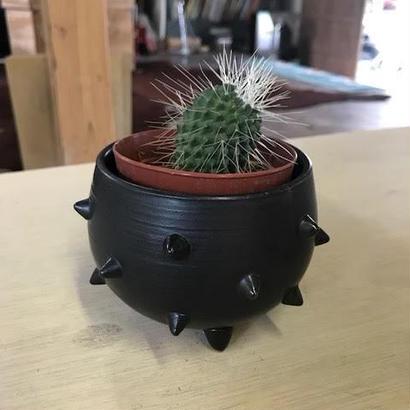 スタッズ爆弾タイプの植木鉢