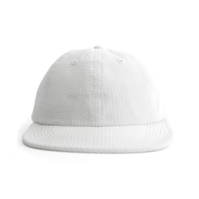 POP SCRIPT FLEXFORM 6 PANEL HAT WHITE
