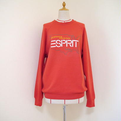 """ESPRIT"" print sweat"