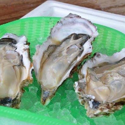 まだまだいけます!宮城県・雄勝産『深海牡蠣』Lサイズ 殻付き15個セット