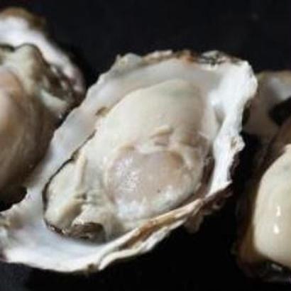 産直!ブランド荒波牡蠣 『殻付』 15個詰め