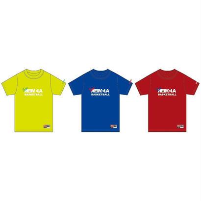 Team-REIMGLA T-shirts(SummerPack)