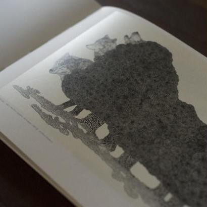 永岡大輔「drawing」