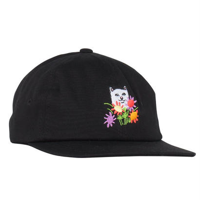 RIPNDIP Nermcasso 6 Panel Black