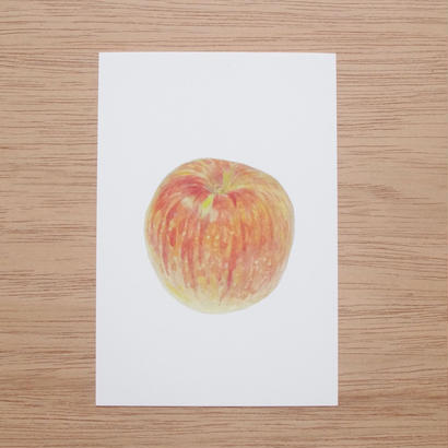 白井裕子 ポストカード りんご