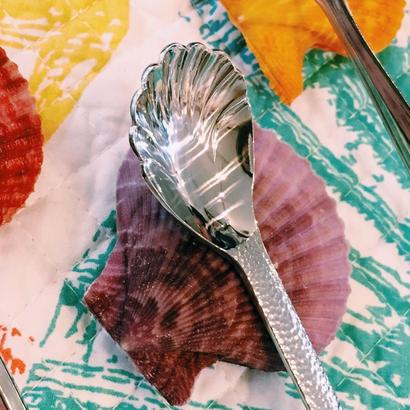 【Sea Code】シェル スプーン(茶碗蒸しスプーン)