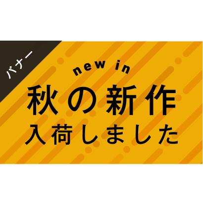 バナー素材|3サイズセット  秋の新作[A_02]