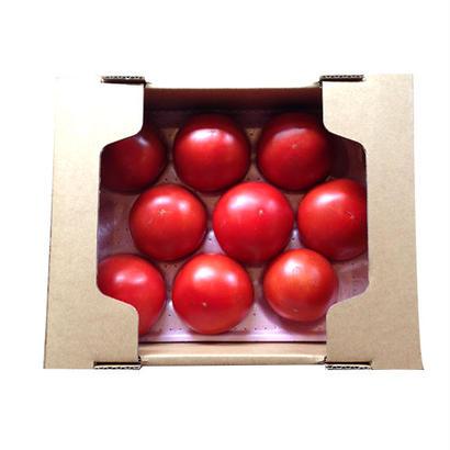 贅沢トマト小箱(9玉)