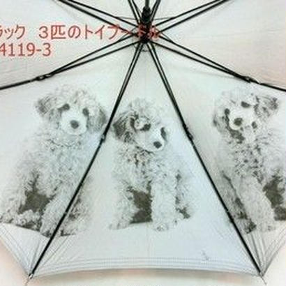 傘専門店  通販  東京  日傘  雨傘  晴雨兼用  遮光 遮熱 ワンタッチ  ジャンプ  黒骨  サビにくい 旅傘  【シルバーコート 3匹のトイプードル   】