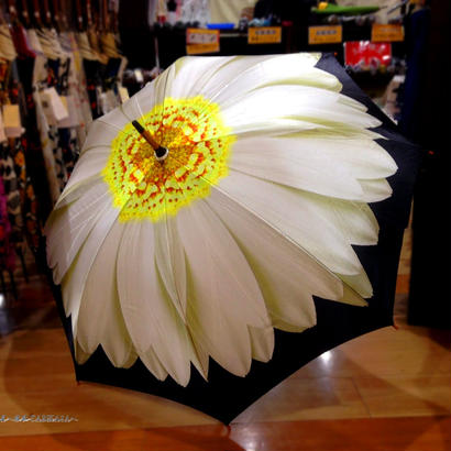 入手難易度上位 通販 東京 レディース 雨傘 サビにくい 超軽量 旅傘【Artシリーズ デイジー】