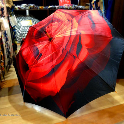 入手難易度上位 通販 東京 レディース 雨傘 サビにくい 超軽量 旅傘【Artシリーズ バラ】