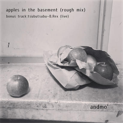 Apples in the Basement (CD-R) / andmo'
