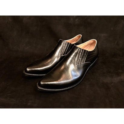 Western Pointed Sidegore Shoes.  -Crocodile-
