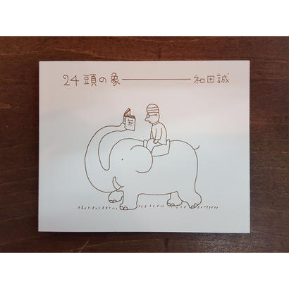 24頭の象