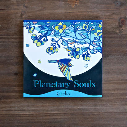 Planetary Souls / Gecko (TKGR-001)