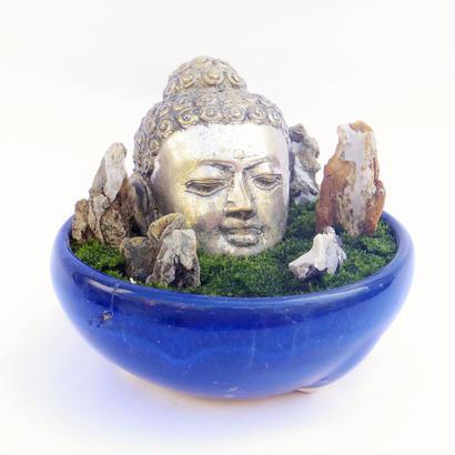 【仏像盆栽】苔(石付き)