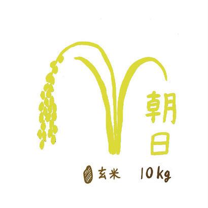 自然栽培米 朝日 玄米10kg 2018年度産