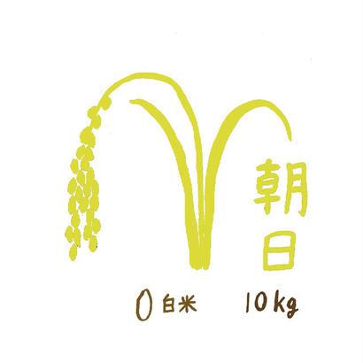 自然栽培米 朝日 白米10kg 2018年度産