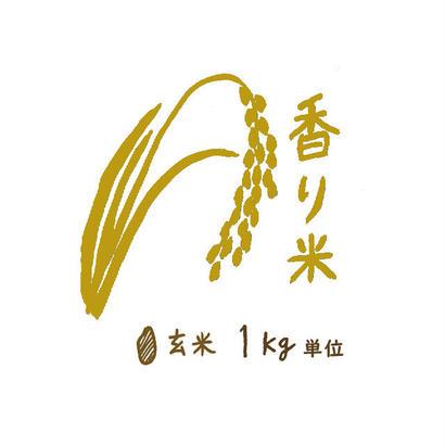 自然栽培 香り米 玄米1kg~9kg 2018年度産