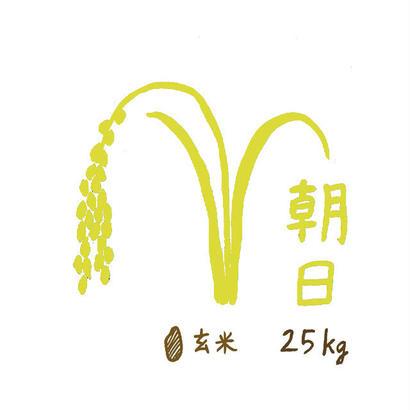 自然栽培米 朝日 玄米25kg 2018年度産