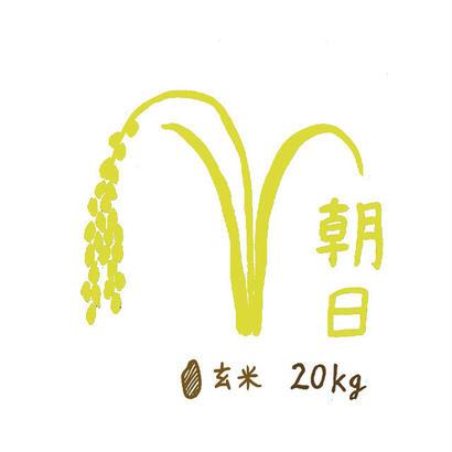 自然栽培米 朝日 玄米20kg 2018年度産