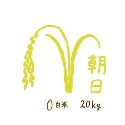 自然栽培米 朝日 白米20kg 2018年度産