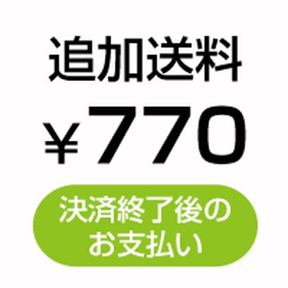 追加送料¥770(決済終了後のお支払い)