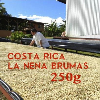 【SPECIALTY COFFEE】250g Costa Rica La Nena Brumas 1.350m Red Honey / コスタリカ ラ・ネナ農園 ブルマスミル レッドハニープロセス
