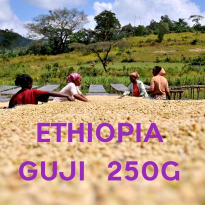 【SPECIALTY COFFEE】250g Ethiopia Sidamo Guji G1 1,750-2,300m Fully Washed / エチオピア シダモ グジ G1 フリーウォッシュト