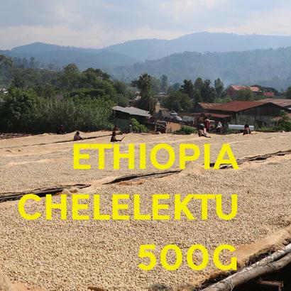 【SPECIALTY COFFEE】500g Ethiopia Yirgachefe Chelelektu 1.600-2.000m F. W. / エチオピア イルガチェフ チェレレクトゥ F.W.