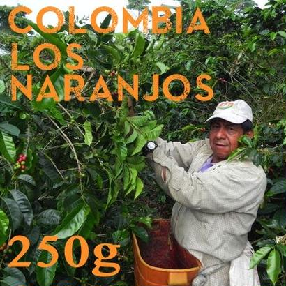 【SPECIALTY COFFEE】250g Colombia Los Naranjos 1,600-1,900m  Fully Washed / コロンビア ロス・ナランホ フリーウォッシュト