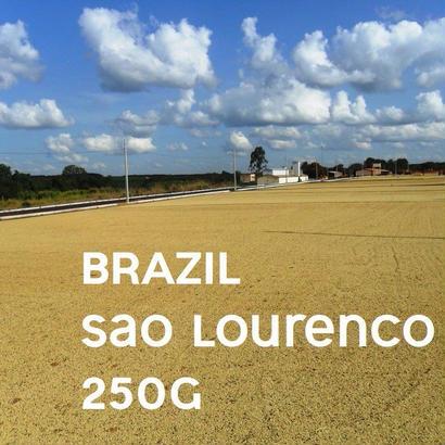 【SPECIALTY COFFEE】250g Brazil Sao Lourenco 1.000m Natural / ブラジル サンロレンツォ ナチュラル