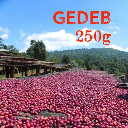 【SPECIALTY COFFEE】250g Ethiopia Yirgacheffe GEDEB 1.600-2.000m Natural / エチオピア イルガチェフ ゲデブ ナチュラル
