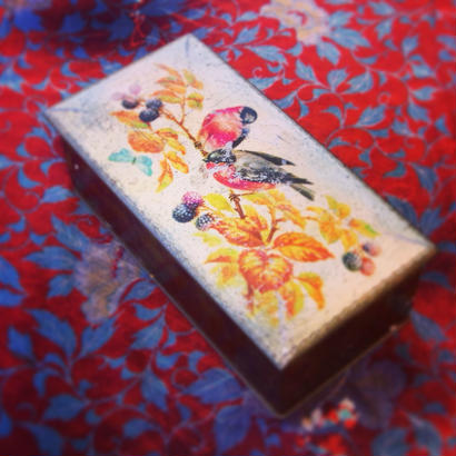 Vintage Tin 木の実と鳥と蝶