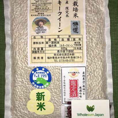 Enzyme Rice Kit * 4 packs  (酵素玄米キット*4個)