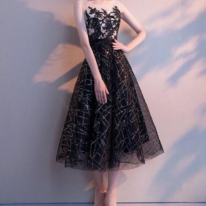刺繍 シースルーAラインパーティードレス 結婚式 ブラック