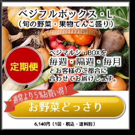 ベジフルボックス L(お野菜てんこ盛り)【定期便】