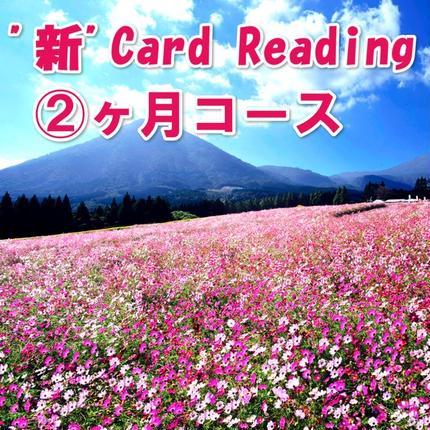 """""""新"""" Reading 格安モニター募集 2ヶ月"""
