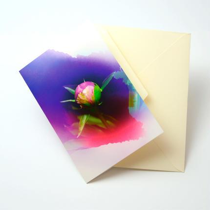 Bloom Card 02 (芍薬)
