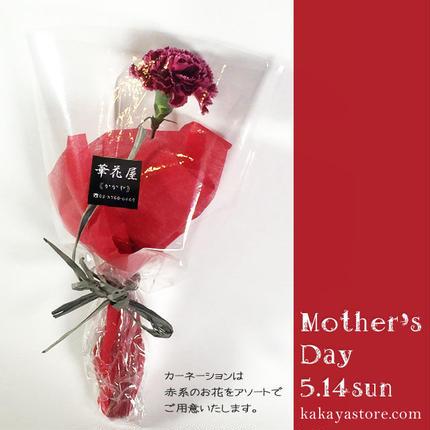 【法人様向け母の日ギフト】カーネーション1本ブーケ・10本セット