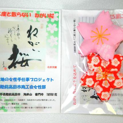 鎮魂の「ねがい桜」(二度と散らない桜) 2個セット(ネコポスにて発送) 18550個限定販売