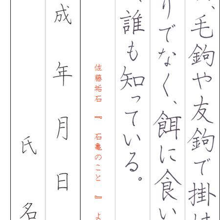 ★ダウンロード販売★[¥100]ペン字【楷書】~『石亀のこと』佐藤垢石~より