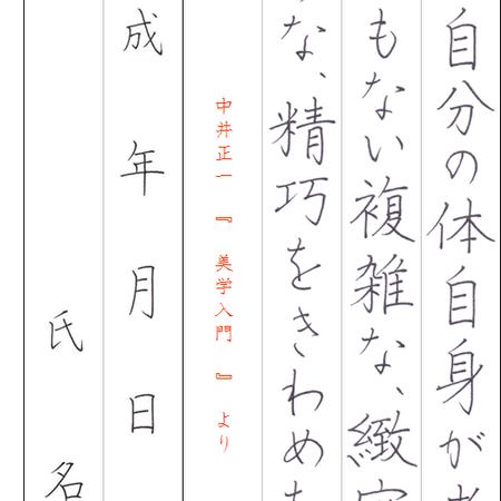 ★ダウンロード販売★[¥100]ペン字【楷書】~『美学入門』中井正一~より