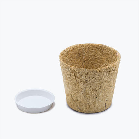 Earth Pot & Saucer    S size