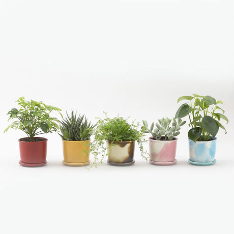 Mug Pot Marble Pink【マグポット マーブルピンク】