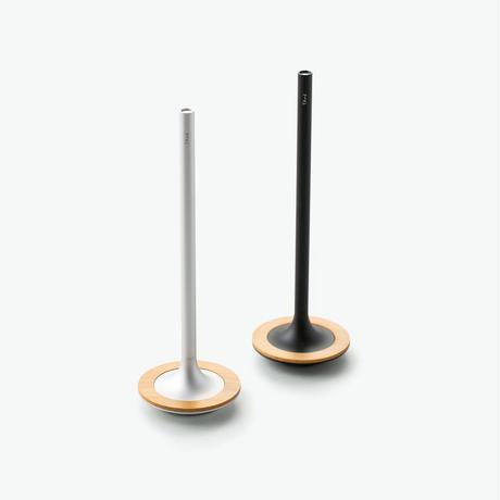 Vertical Stand Pen