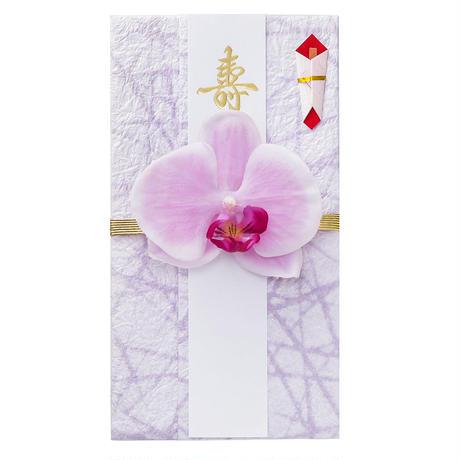 胡蝶蘭のし袋(D)