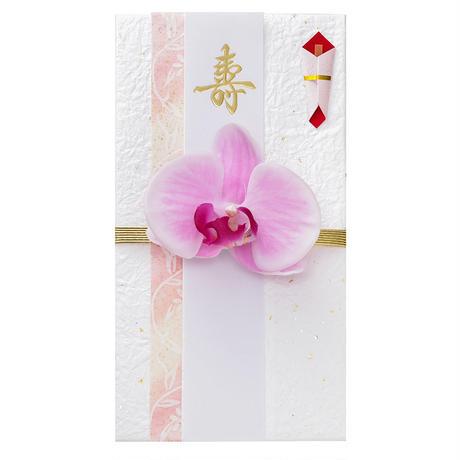 胡蝶蘭のし袋(A)